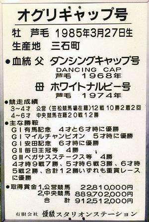 Oguri2