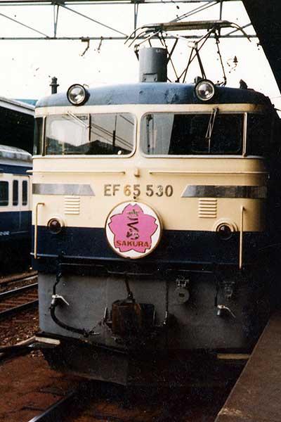Sakura65_1